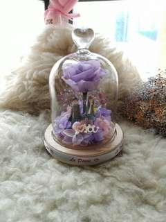 紫有妳保鮮花擺設