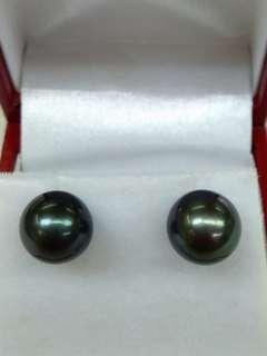18K White Gold Tahiti Sea Water Pearl Earrings