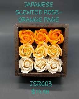 Japanese Scented Rose - Orange Page