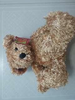 🚚 Classic Teddy Bear with tag