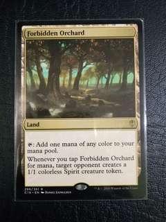 1 x Forbidden Orchard C16 mtg near mint