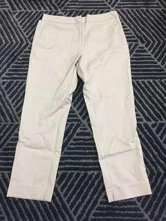 Khaki Pants from Seed