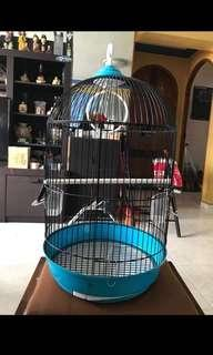 Almost New Bird Cage