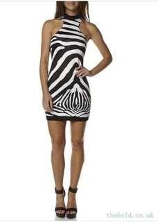 BlueJuice Zebra Dress