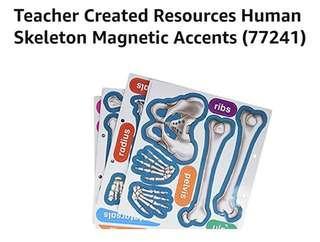 [FreeMail] Magnetic Human Skeleton $30