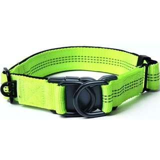 Dog Collar (Brand new, in stock, adjustable)