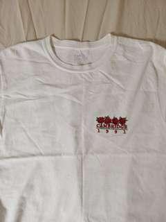 [instock] brandy melville rose cambridge 1991 rosay tee