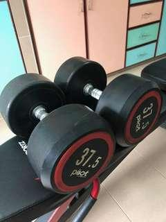 Fitness dumbbell (weights in KG)