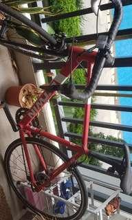 Roadbike BTWIn