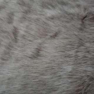 Fur Mat - Grayiiish Brown