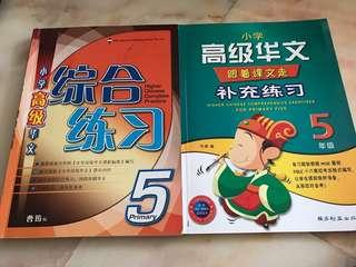P5 Higher Chinese Practice books