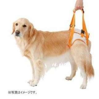 日本Petio 派地奧 老犬 高齡犬介護步行輔助帶(3L)大型犬 後腳提帶 後足3631(二手)