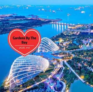 🚚 Gardens By The Bay ( 2 Domes)