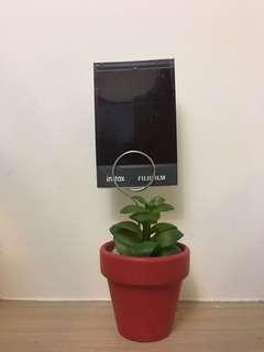 🚚 人造植物小盆栽照片夾