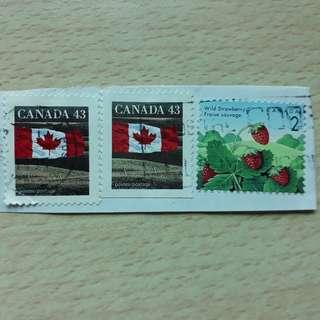 🚚 CASTM. 1992 Canada Stamps.