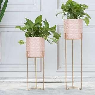 Plant / Pot Stand