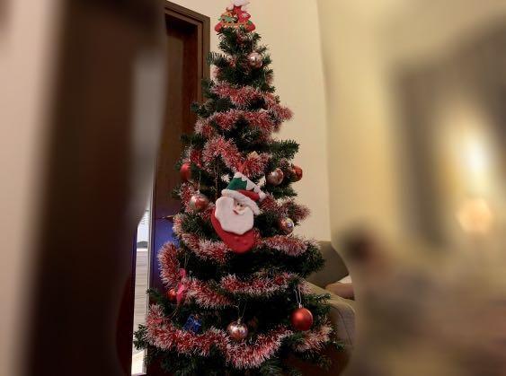 聖誕樹🎄連裝飾品