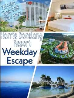 Exclusive 3D2N Harris stay with Spa massage