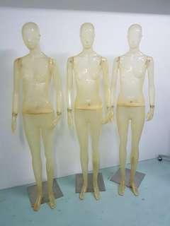 Transparent Female Mannequin