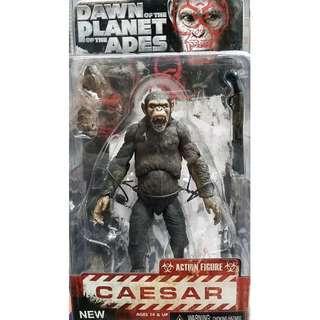 猿人爭霸戰 Planet of the Apes Caesar Action Figure NECA