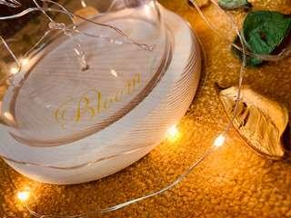 Glass Dome Wooden Base with Led Light