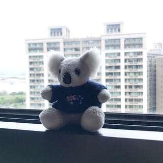 🚚 澳洲無尾熊玩偶