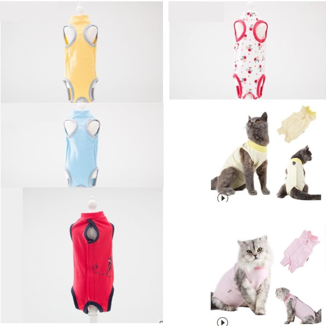 cat kitten surgery suit clothes spay neuter shirt, not carrier cage condo scratch tree cushion bed food