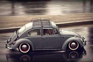 roofrack for VW beetle