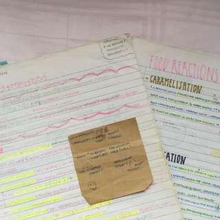 olevel f&n handwritten notes
