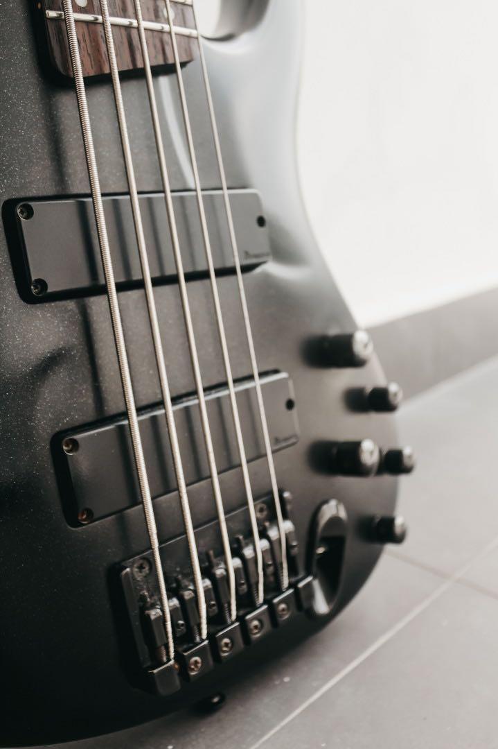 Ibanez EDB605 Ergodyne Five Strings (Limited Edition)