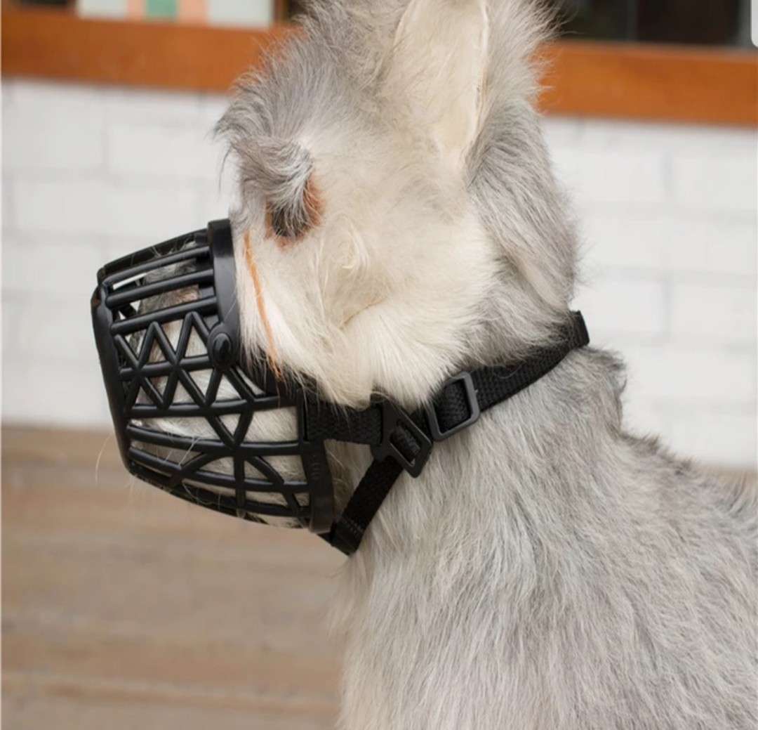 No More Chafing Included Training Guide Helps Build Bonds Pet Gentle Muzzle Guard Dogs Prevents Biting Unwanted Chewing Safely Secure Comfort Fit Soft Neoprene Padding