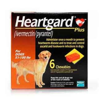 (南南貓舍)  Heartgard Plus for Dogs 心絲蟲 肉粒 51 to 100Lbs (行貨)