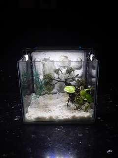 Aquarium 3D size M