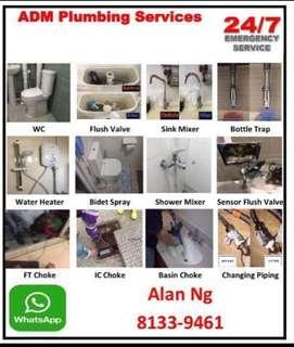 Plumbing Services ,Choke,Toilet Bowl Repair