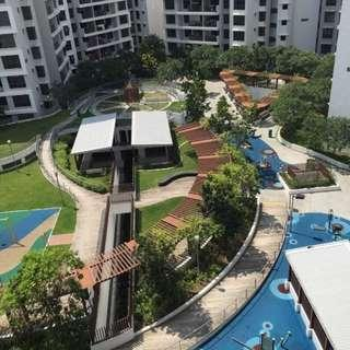 ADORA GREEN Blk 347A Yishun Ave 11 5 room unit for rent 10 mins to North Point Shopping/MRT  Beside Yishun Pond Park