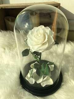 Beauty and the beast rose jar