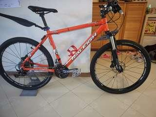 Rare Raleigh Mojave 8.0 Limited Team Edition