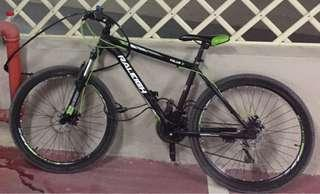 Raleigh MTB (RE-PRICED!!!)