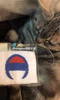 🚚 Champion運動手環