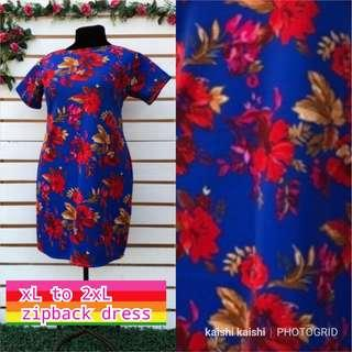 New plus size zipback dress
