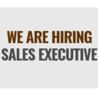 Sales Executive - We Are Hiring!