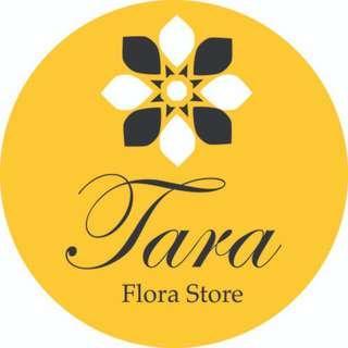 Logo Design : freelance graphic designer for hire!