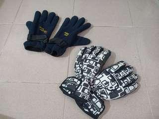 Two Winter gloves