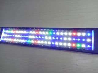 Fish tank bracket light