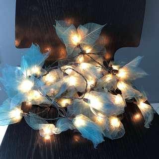 Beautiful Fairy Lights