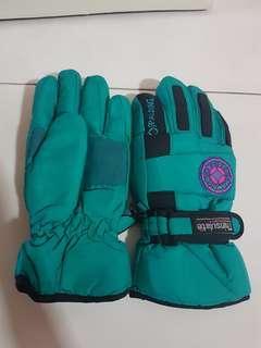 Winter/ Ski Gloves