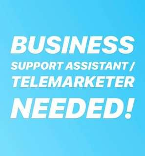 Business Support Assistant / Telemarketer