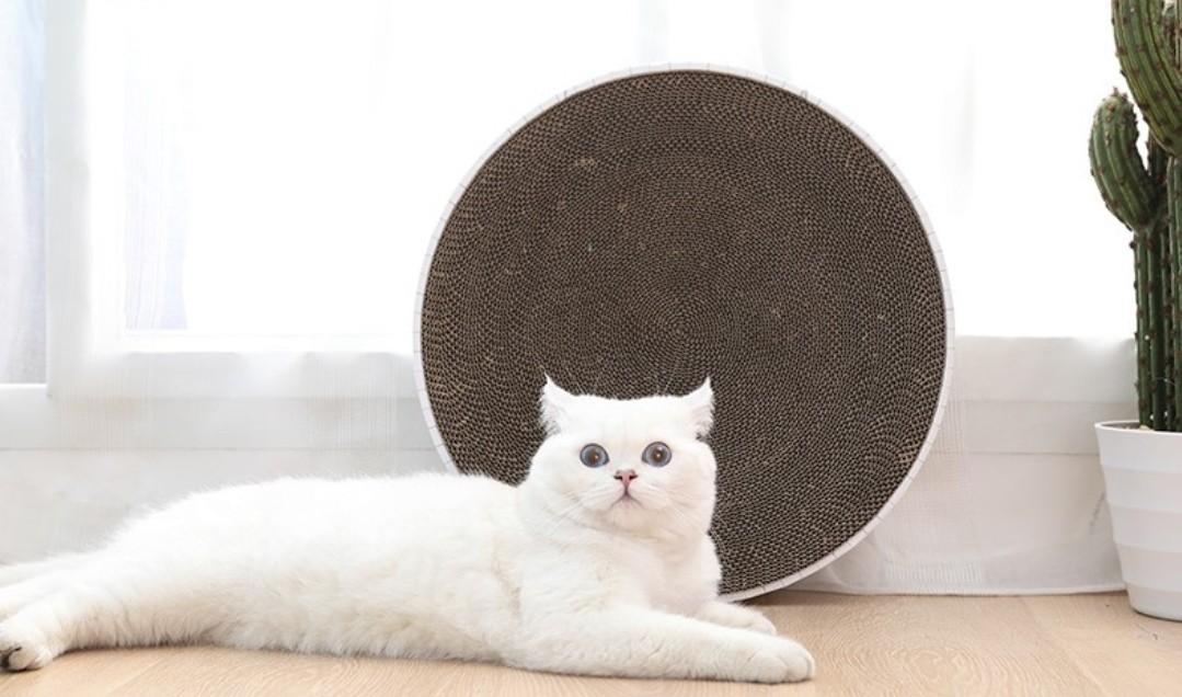 Cosy Round Cat bed/Scratcher