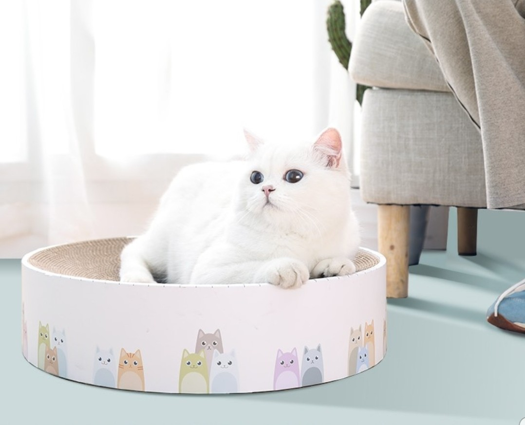 Cosy Round Cat bed/Scratcher, Pet Supplies, For Cats, Cat
