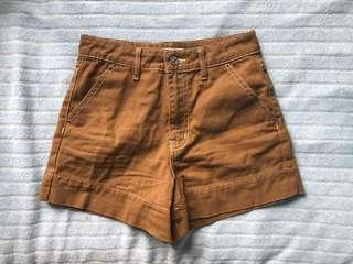 size 24 high waisted, brown shorts